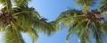 Barbados-DSCN3139.jpg
