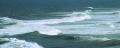 Brandung Durban -1.jpg