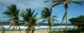Barbados 295-01.jpg