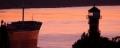 Abendst-Elbe UF-Wittenb 7904-4.jpg