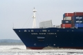 CMA CGM Tosca Bug-Winter SW-310106.jpg