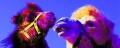 2 Kamele Pop-Art-240307-4.jpg