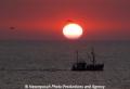 Fischk-Sonnenunterg 3804-6A.jpg