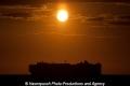 Autotransporter im Sonnenuntergang SH-230611-01.jpg